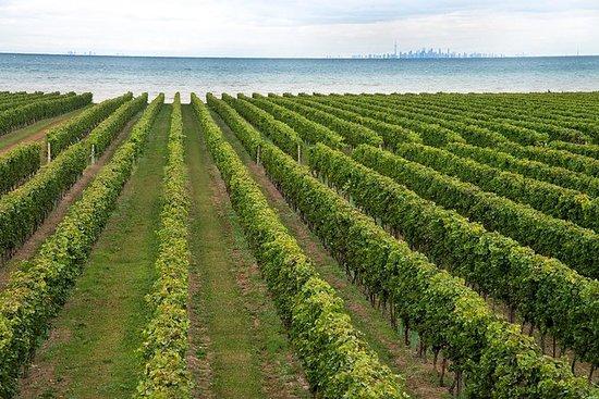 Konzelmann Estate Winery Tour og...