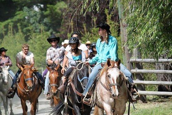 1- or 2-Hour Horseback Ride in...
