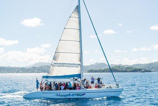 Crociera panoramica in catamarano di