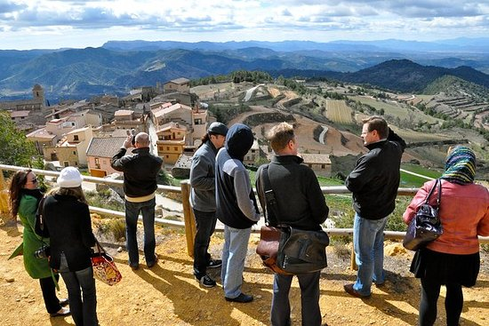 Priorat Wineries Tour from Barcelona...