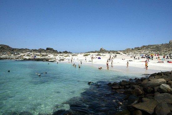 Isla Damas y Punta Choros desde La...