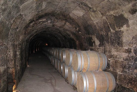 Guided Wine Day Tour til Ribera del...