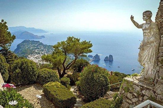 Excursión guiada a Capri y Anacapri...