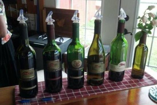 Tour do Vinho da Região do Vale de...