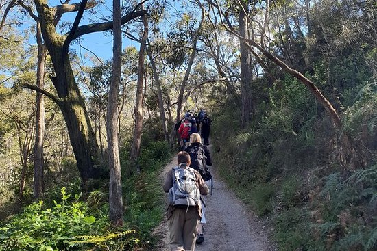 Mount Lofty Hike and Cleland Wildlife...