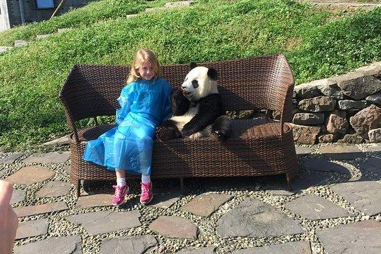 Privat tur Dujiangyan Panda Center...