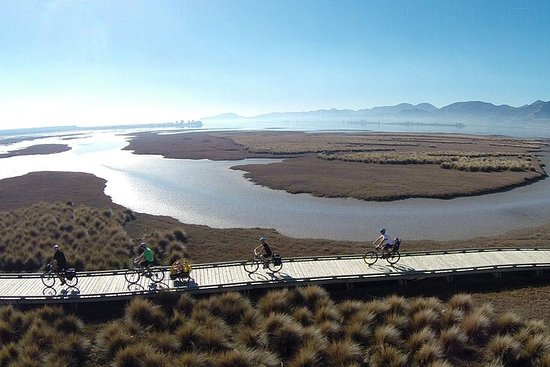 Auto-Guidé Nelson à Mapua Cycle...