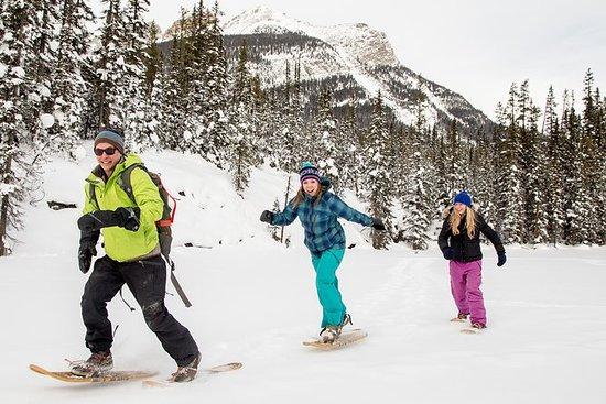 First Tracks Snowshoe Explorer