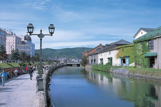 Private Otaru Sightseeing with...