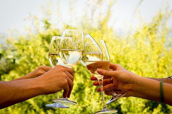 Franschhoek and Stellenbosch Wine...