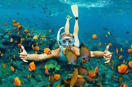 Excursion plongée avec tuba à Bali au...