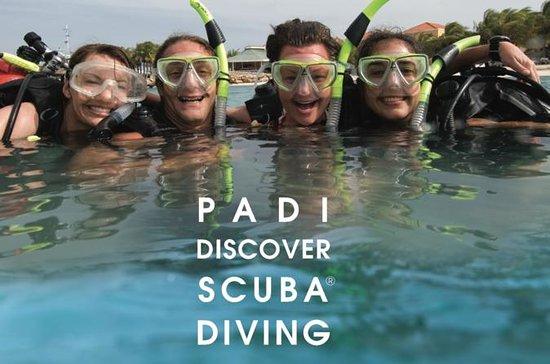 在长滩岛体验水肺潜水