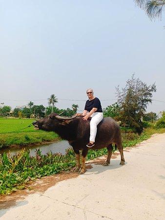 Tran Private Tours - Da Nang Hoi An Reliable Tour Operator
