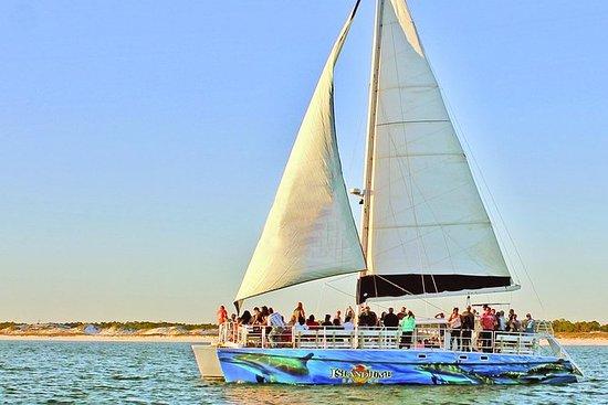 白天海豚双体帆船巡航