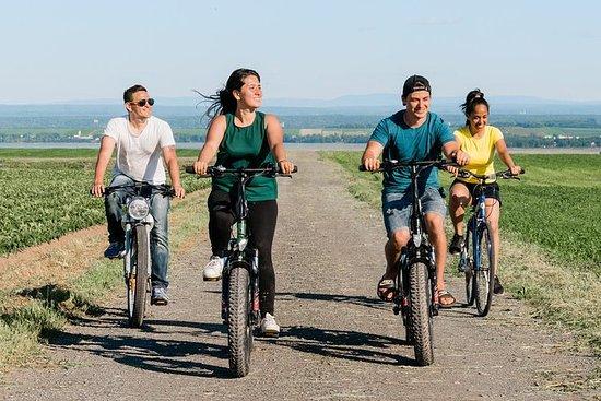 Visita guiada en bicicleta por Ile...