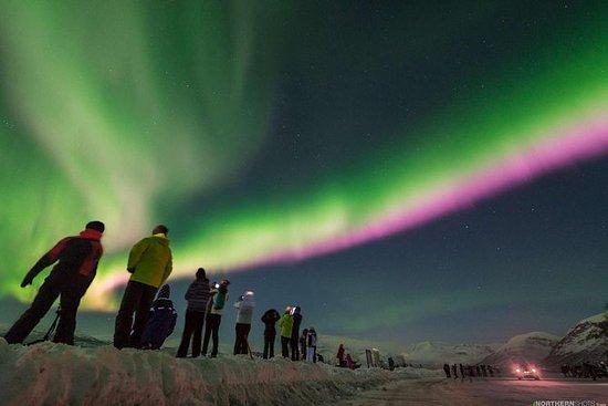 Cacería de auroras boreales con...
