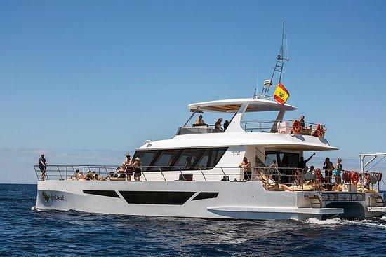 THE 10 BEST Gran Canaria Boat Tours & Water Sports - TripAdvisor