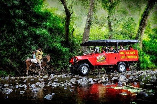 Half-Day Off Road Cave Safari in Fiji