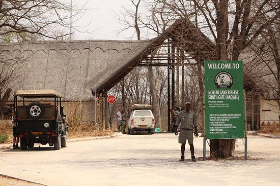 Botswanas最佳奥卡万戈三角洲帐篷露营野生动物园