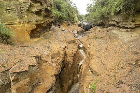 Dagstur til Lake Naivasha og Hells Gate...