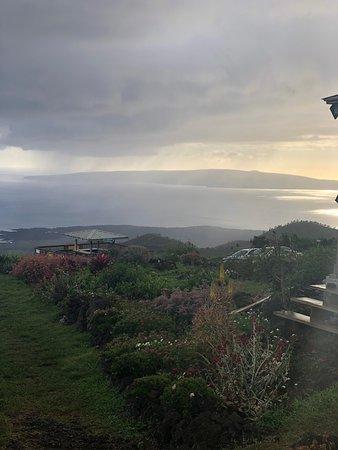 36e7c7a211 Hana Tours of Maui - 2019 All You Need to Know BEFORE You Go (with ...