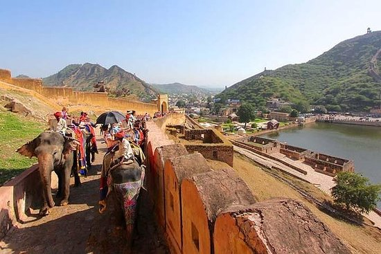Jaipur Private Day Tour from Delhi-All...