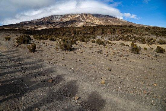 Kilimanjaro climb, Lemosho Route...