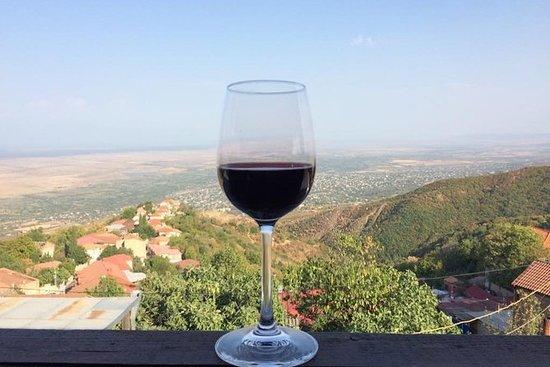 卡赫季地区的私人酒厂之旅