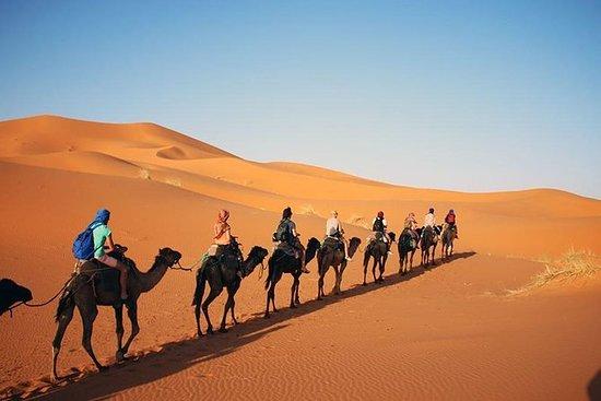摩洛哥冒险沙漠之旅从马拉喀什出发3天