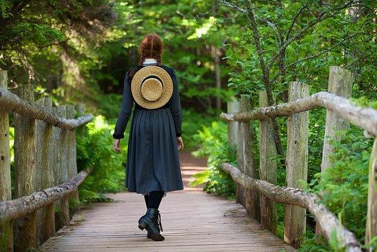 安妮的绿色山墙冒险私人旅游为7-12乘客