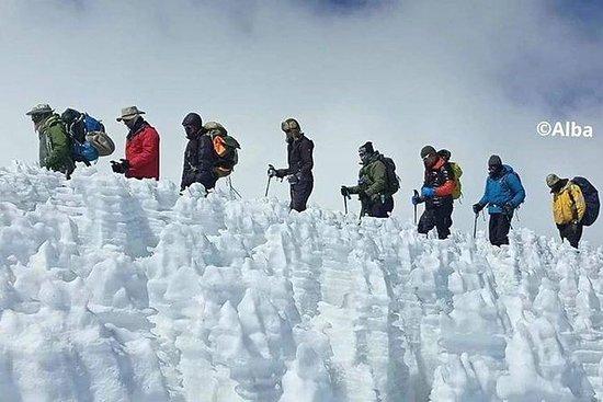 Kilimanjaro Climbing 8 days Lemosho...