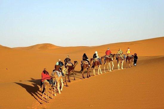Passeios de férias Marrocos a partir de...