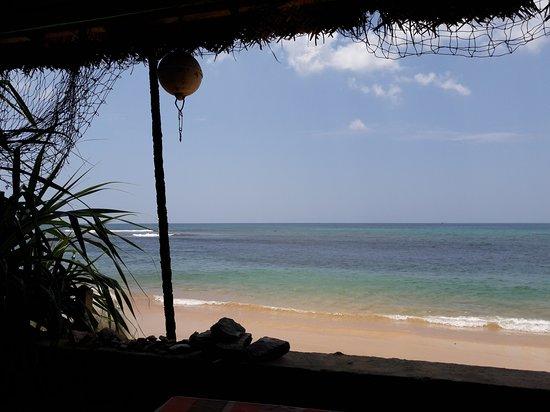 parrot s paradise hikkaduwa updated 2019 restaurant reviews rh tripadvisor com