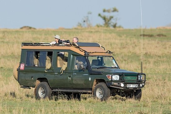 8天南坦桑尼亚预算公路野生动物园