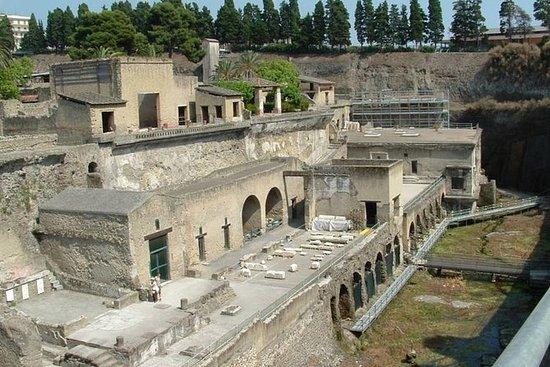 Pompeya y el monte Vesubio con bodega...