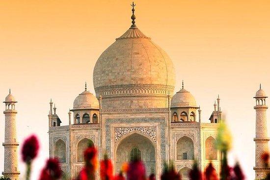 Taj Mahal & Agra Fort Day Tour De...