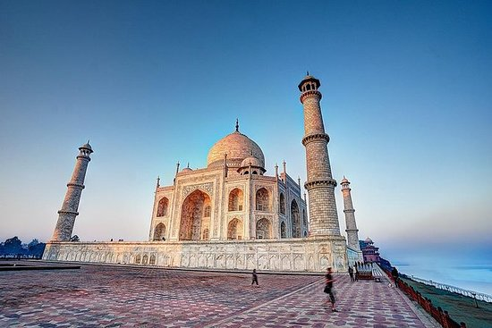Excursion d'une journée au fort Taj...