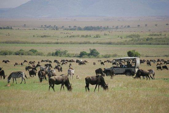 5 Days Safari Masai Mara And Samburu