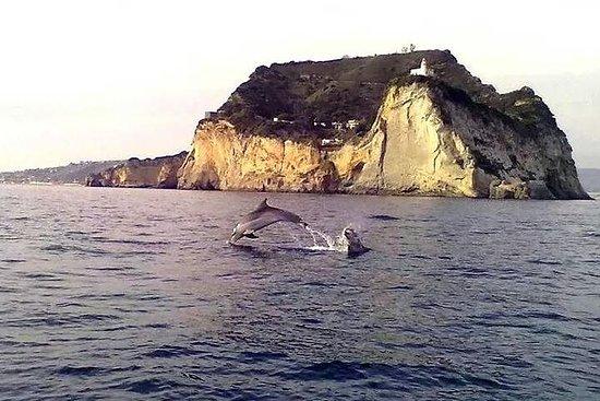 Tour de la costa de Amalfi