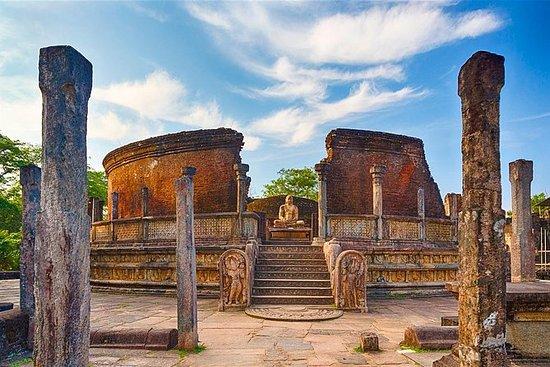 Polonnaruwa Day Tour