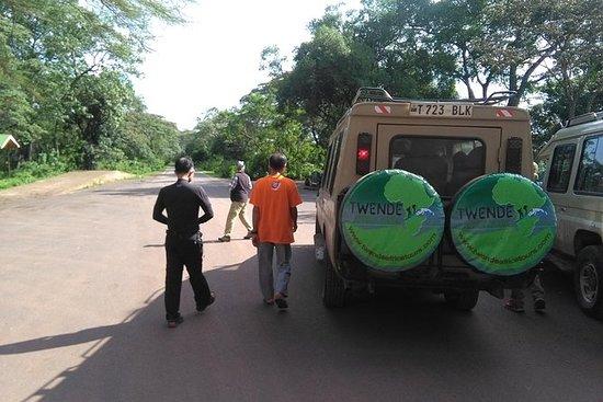 4 dias Safaris na Tanzânia
