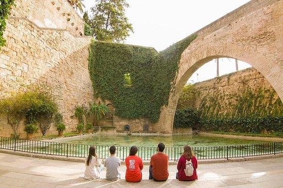 Palma: Visite guidée en petit groupe...