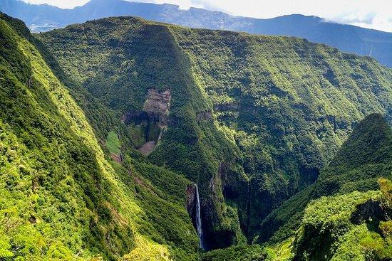 ハイキング:Bélouveのユニークな熱帯雨林を発見してください。