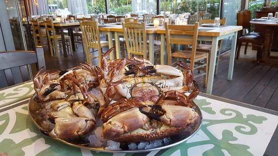 Ζωντανά καβούρια που μπορείτε να παραγγείλετε και να σας προτείνουμε το πιάτο