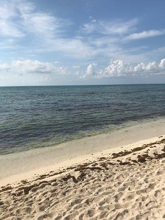 El Dorado Casitas Royale by Karisma: Beach