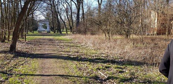 Central Poland, โปแลนด์: Wiosna w parku.