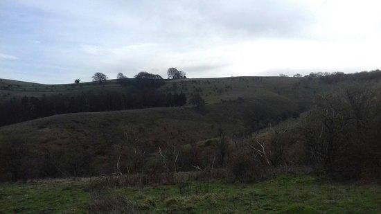Pegsdon Hills Nature Reserve