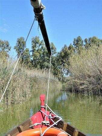 In barca tra le canne del lago.