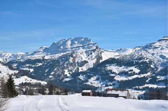 Illgau, Suiza: View from the terrace: Wasserberg mountain