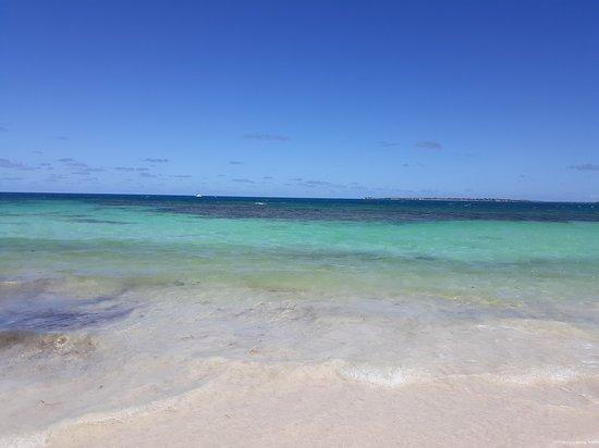 Jabberwock Beach: view from the beach